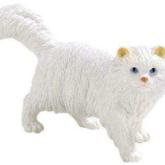 Kočka Perská Princezna